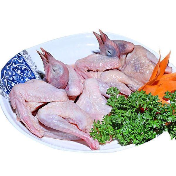 chim bồ câu nấu gì